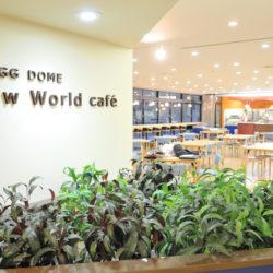 日替わりやデザートが充実した食堂「Slow World Cafe」です。
