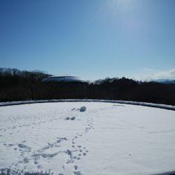 円芝にも雪がたくさん積もってしまいました。