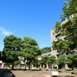 経済学部棟ではどこからも緑いっぱいの中庭が見えます。