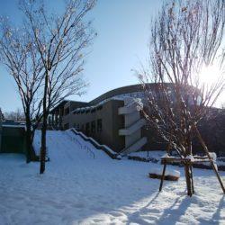 教室に行く道に積もっている雪の写真です。