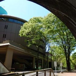 法政トンネルから覗いた夏のEGG DOMEです。