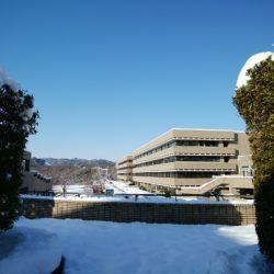 ひだまり広場から見た多摩キャンパスです。