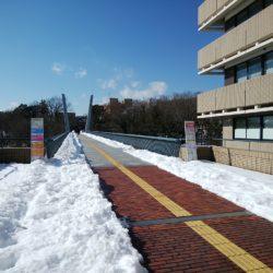 学生さんの不便がないよう雪かきはしっかり行っています。
