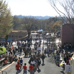 新歓祭は、毎年多くのサークルと新入生が参加するイベントです。