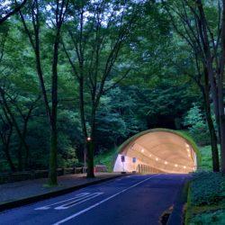 梅雨の夜に撮った法政トンネルです。